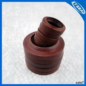 Tc Oil Seal in Color Brown pictures & photos