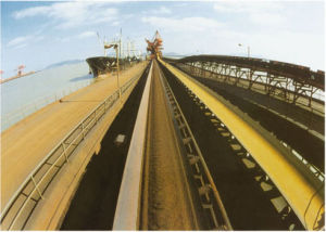 Polyester Conveyor Belt pictures & photos