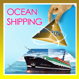 Shanghai Air Sea Freight Forwarding Service to Mexico South America----Coley