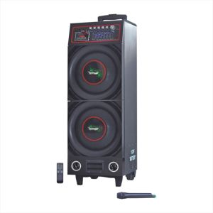 Stage Speaker Rechargeble Battery Wood Speaker (6100t) pictures & photos