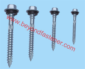 Ruspert Screw Wood Screw Double Thread Screw pictures & photos