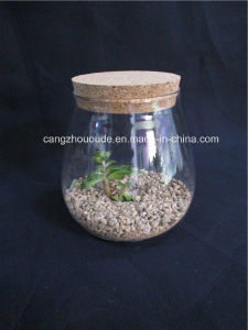 Glass Vase with a Lid pictures & photos