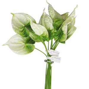 New Design Plastic Artificial Flower for Sale pictures & photos