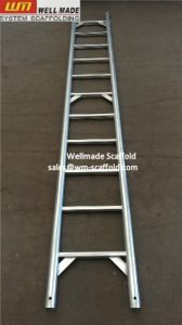 Galvanized Layher Scaffolding Steel Ladder for Sale pictures & photos