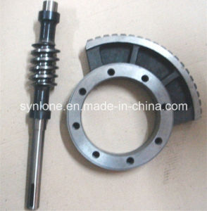 OEM Casting/Forging Steel Worm Gear and Worm Shaft pictures & photos