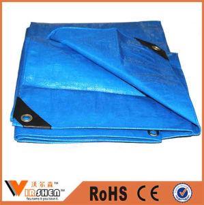 Plastic Tarpaulin Cover, PE Tarpaulin Sheet, Polyethylene Container Tarpaulin pictures & photos