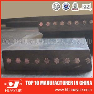 St Fire Resistant Steel Cord Conveyor Belt (ST630-5400) pictures & photos