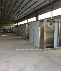 GMP Standard Pharmaceutical Drying Oven (CT-C Series) pictures & photos