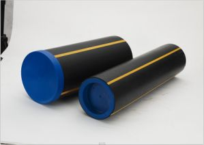 Plastic LDPE End Cap for Pipe with SGS pictures & photos