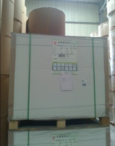 Offset Paper, Woodfree Paper /100% Virgin Pulp Offset Paper