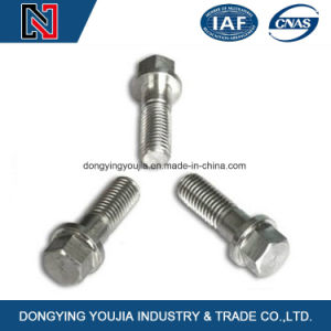 Hot Selling Stainless Steel Hexagon Flange Bolt pictures & photos