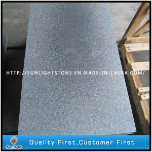 Cheap Flamed G654 Impala Dark Black/Grey Granite for Paving Tiles pictures & photos