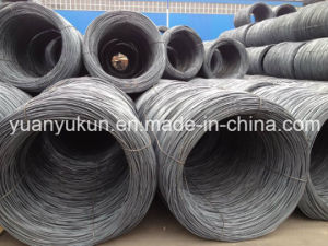 5.5mm/6.5mm/8mm/10mm Sea1006/Sea1008 Wire Rod Wholesale pictures & photos