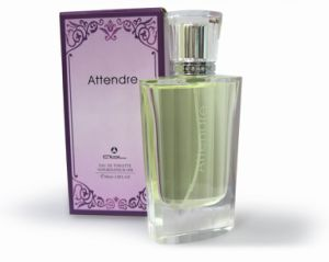 Edp Perfumes with Best Quality and Long Lasting Smell for Female pictures & photos