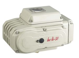 Electric Valve and Actuator Hl-100 pictures & photos