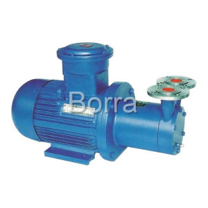 Magnetic Rotary Pump pictures & photos