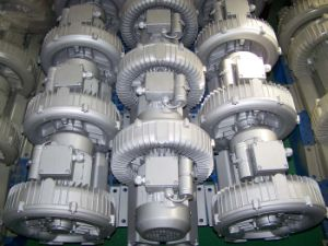 Air Blower / Ring Blower (2RB) pictures & photos