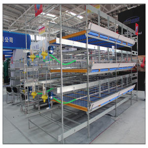 Galvanzied H Type Broiler Battery Cage Chicken Farm Poultry for Sell pictures & photos