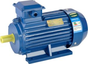 Ce Approved 0.12kw-315kw Y2 Series Three Phase Asynchronous Electric Motor pictures & photos