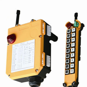 F21-18s China Manufacturer Offer 18 Channel Crane Wireless Remote Control pictures & photos