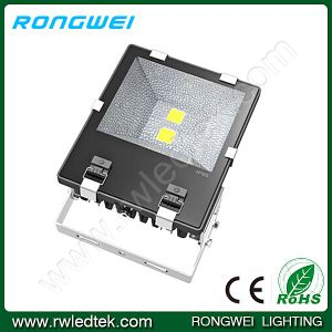 IP65 2chips Square/Park/Open-Air COB 100W LED Floodlight Bulb
