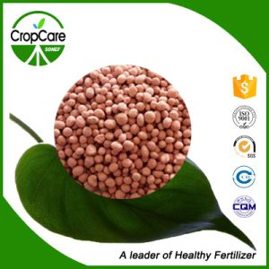Wholesale Granular NPK 15-15-15 Compound Fertilizer pictures & photos