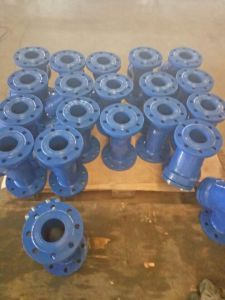 Flanges End Strainer pictures & photos