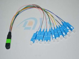 12 MTP/MPO to Sc Sm Fiber Optic Cable pictures & photos