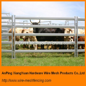 Galvanized Cattle Panels with Oval Rails Australia Standard pictures & photos
