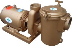 High Performance Commercial Swimming Pool Pump pictures & photos