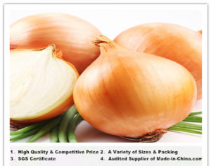 China Fresh Yellow Onions (2015New Season)