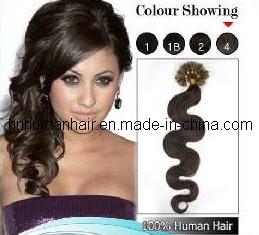 Silky Hair (HN-N-006)