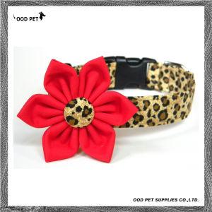 Big Flower Deco Velvet Leopard Dog Collar (SPC7232) pictures & photos