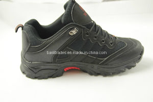 2014 Hiking Sports Shoes