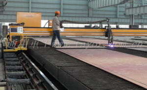 CNC Gantry Plasma and Oxy Fuel Cutting Machine for Metal Sheet and Metal Plate pictures & photos