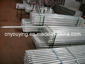 Scaffold Tube with Fittings