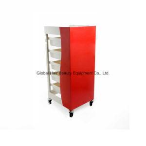 New Design Beautiful Salon Trolley (HQ-2383)