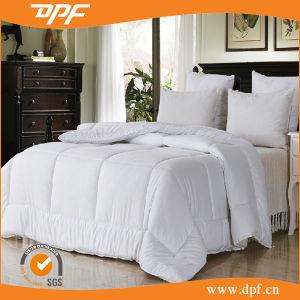 Quilting Velvet Comforter (DPF061060) pictures & photos