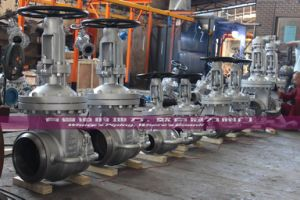 API 600 Wedge Gate Valve OS&Y Class300 Bw Ends pictures & photos