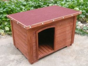 Dog Kennel (PCDH-D074)