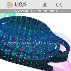 LED Rope Light (BY-LRF-4W-120V)