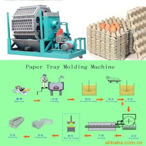 Pulp Egg Tray and Carton Making Machine 1000pic/Hour