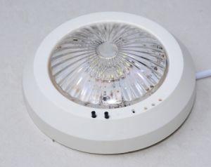 4W Emergency Ceiling Light