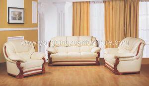 Leather Sofa (1019)