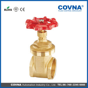 Rising Stem Brass Gate Valve