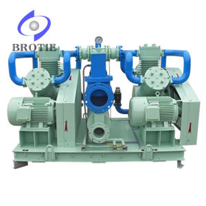 Brotie 100% Oil-Free Oxygen Compressor pictures & photos