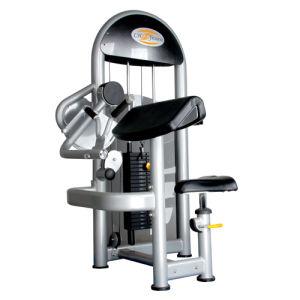 Gym Equipment / Bicep Curl Machine