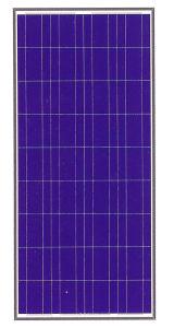 125-150W Solar Panle (Poly)