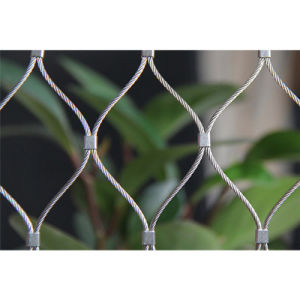 Stainless Steel Cable Mesh for Bridge Usage pictures & photos