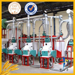 Home Use Wheat Flour Milling pictures & photos